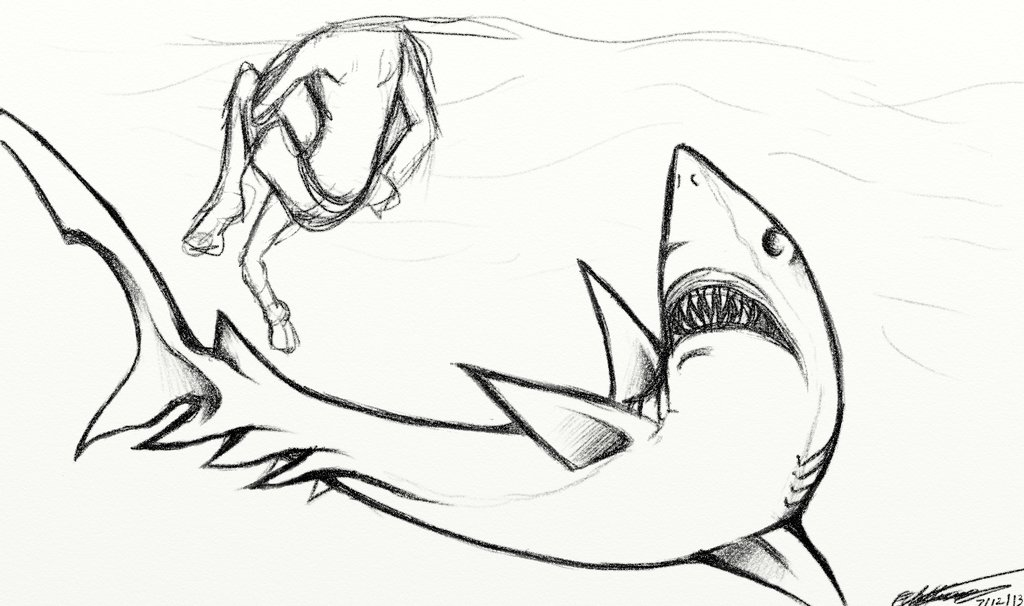 1024x606 Mutated Shark Sketch Or Something By Wtfpenguinsinamerica