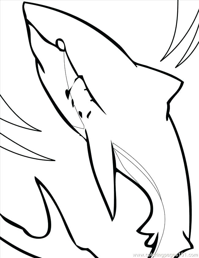 650x841 Tiger Shark Coloring Page Tiger Shark Coloring Pages Dazzling
