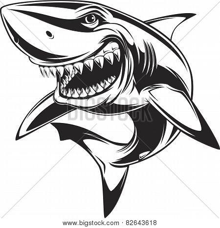 450x467 Image Cartoon Shark Face Images, Illustrations, Vectors