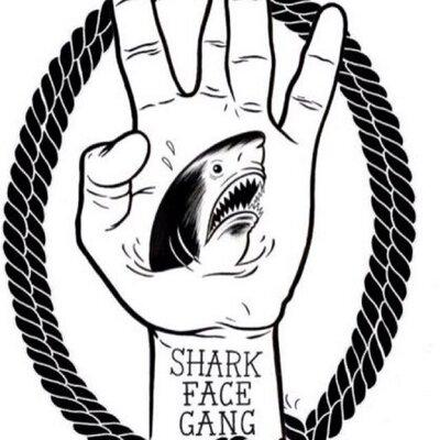 400x400 Shark Face Gang (@sharkfacegang) Twitter