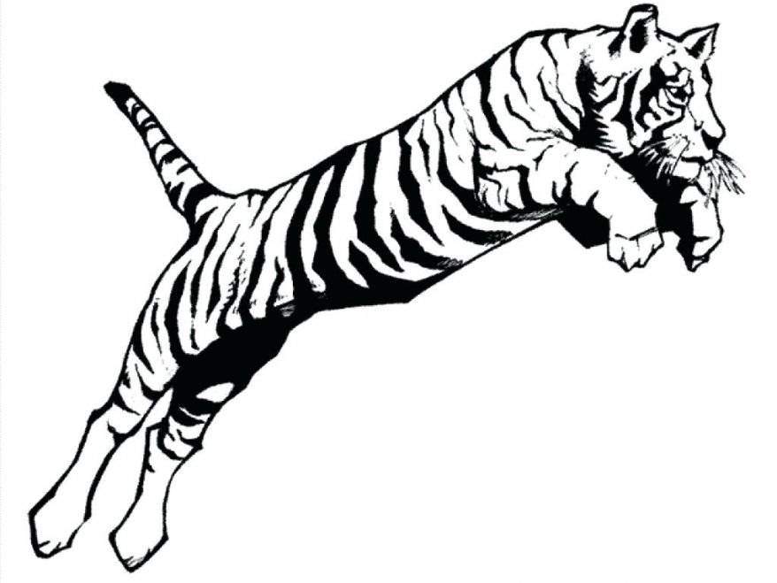 878x659 Coloring Page Of A Tiger 106 Terrific Sand Shark Tiger Coloring