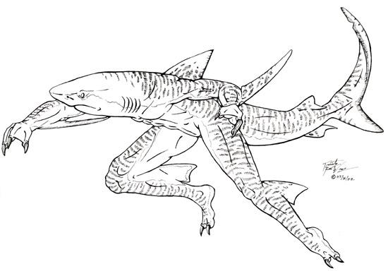 Shark Head Drawing At GetDrawings