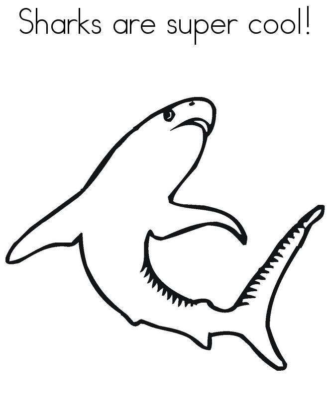 Shark Line Drawing