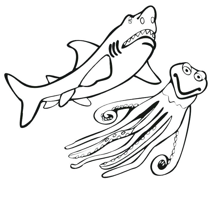 700x699 Tiger Shark Coloring Page Tiger Shark Coloring Pages Shark Color