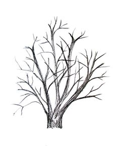 236x300 How To Draw A Forest With Pencil
