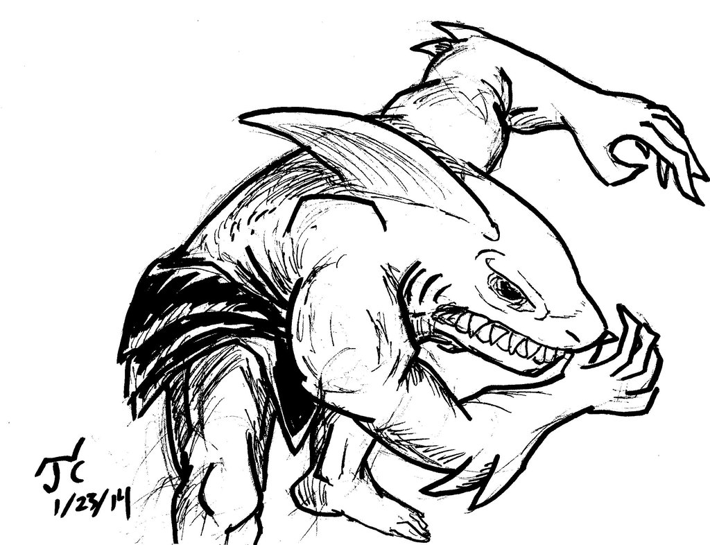 Shark Pictures Drawing at GetDrawings.com | Free for personal use ...