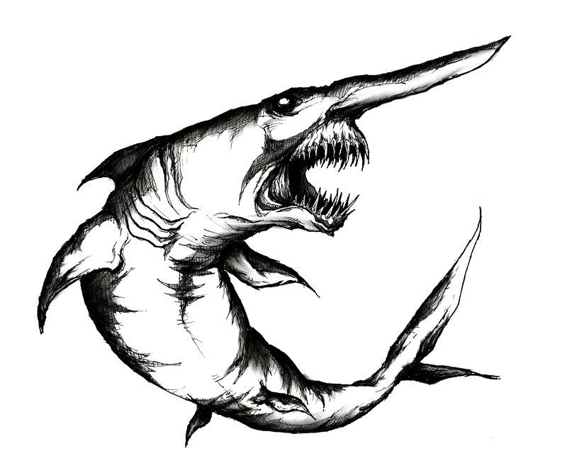 800x636 Goblin Shark By Godofnumbers