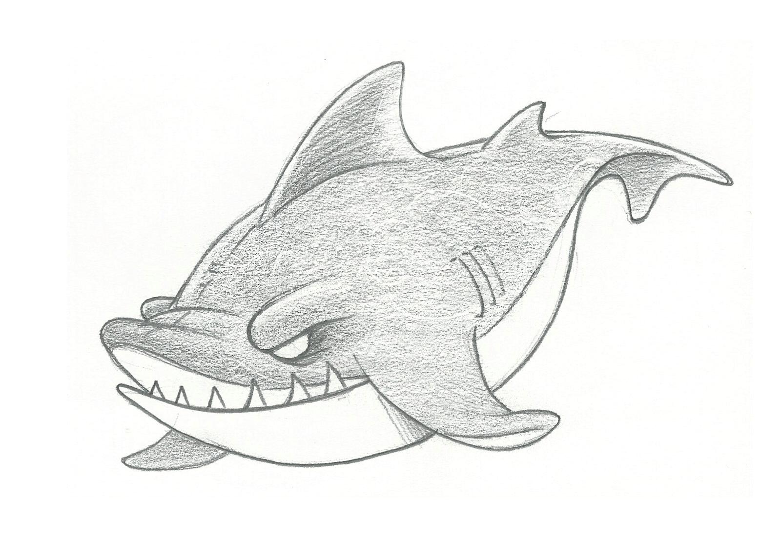 1600x1109 Pencil Drawings Of Sharks