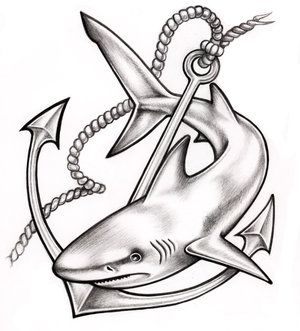 Shark Tattoo Drawing