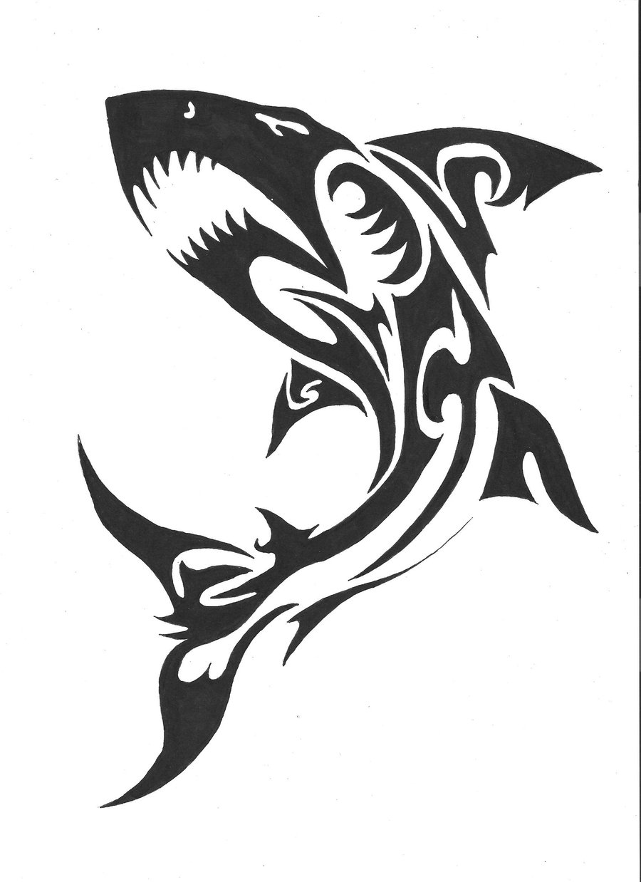 It's just a picture of Striking Shark Tattoo Drawing