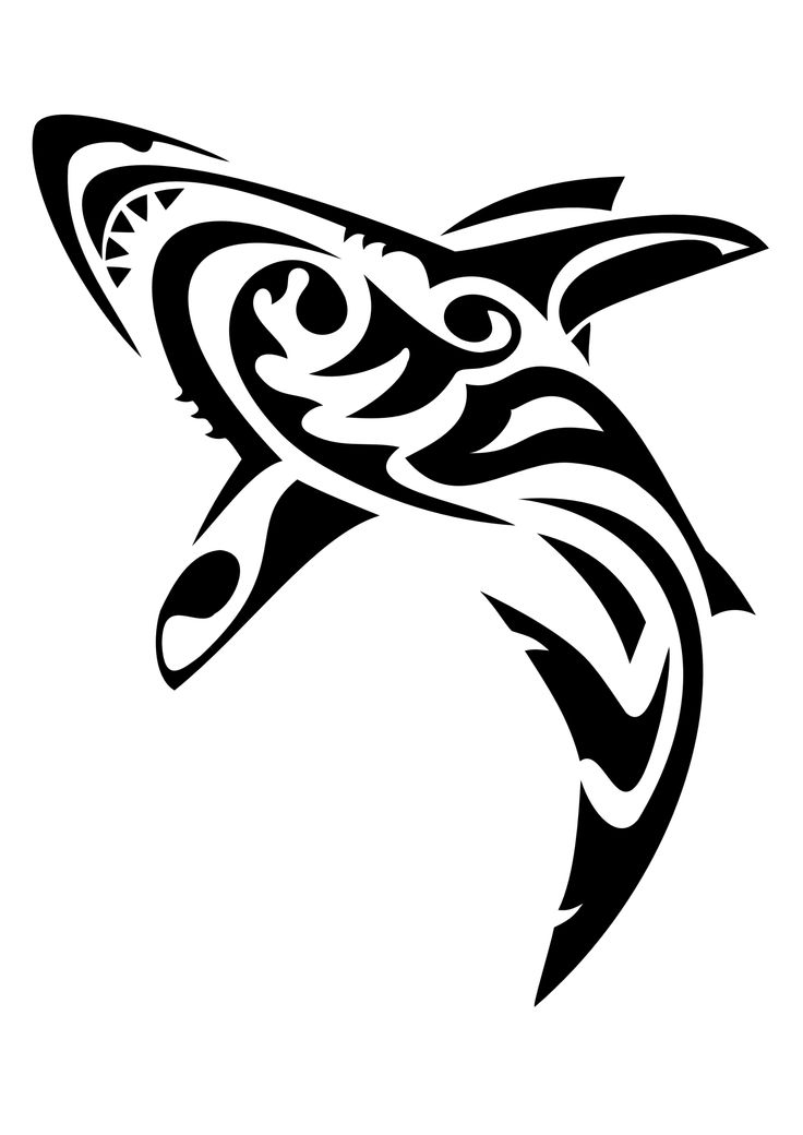 Shark Tattoo Drawing At Getdrawings Com Free For Personal Use