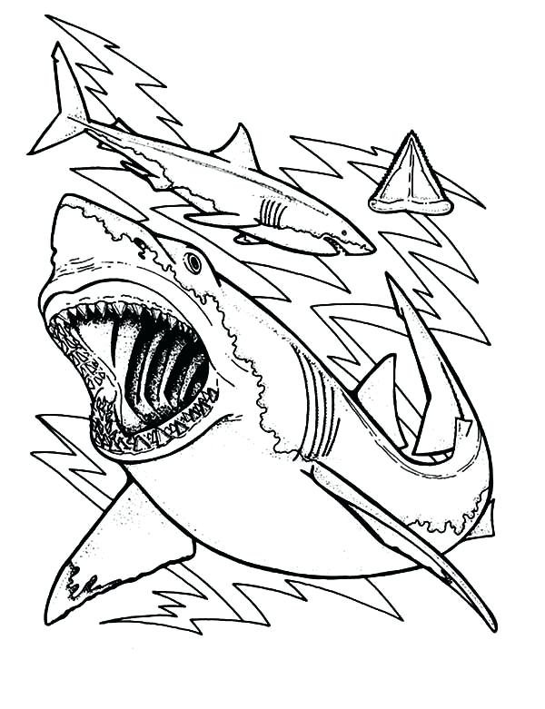 600x781 Best Of Shark Coloring Pages Images Shark Jaws Sketch Coloring
