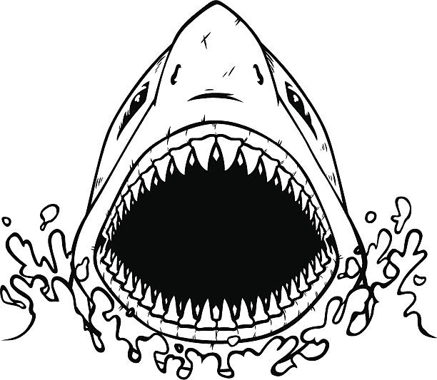 612x533 Shark Mouth Clipart Black And White