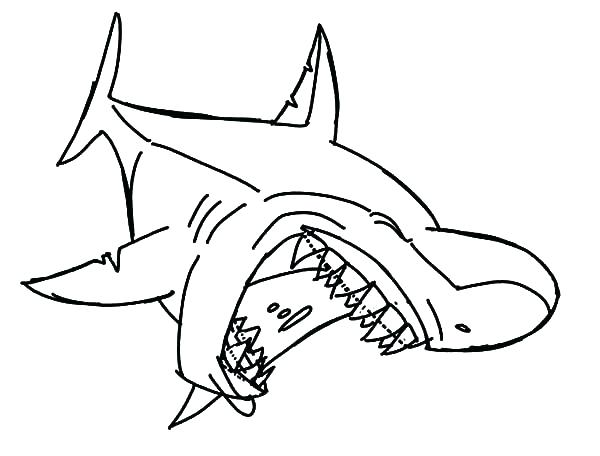 600x456 Shark To Color Shark Colouring Page 5 Whale Shark Coloring Pages