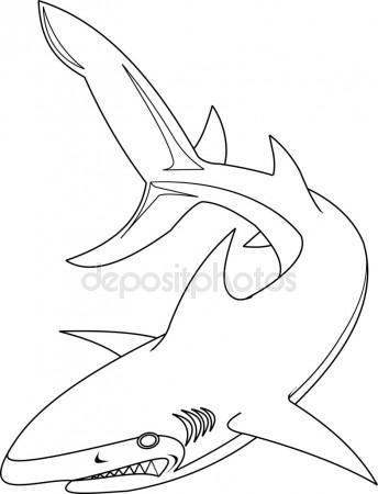 344x450 Graphic Drawing Ink Aggressive Shark With Open Mouth Stock