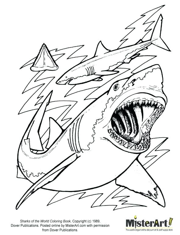 591x770 Mako Shark Coloring Page Sharks Coloring Pages With Best Great