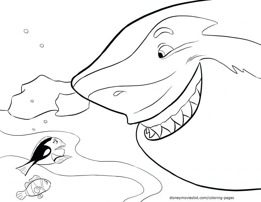 863x667 Shark Picture To Color Finding The Coloring Page Hammerhead