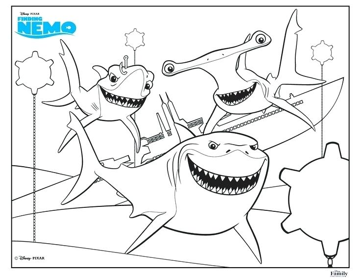 735x567 Coloring Page Shark Great White Shark Coloring Pages Shark