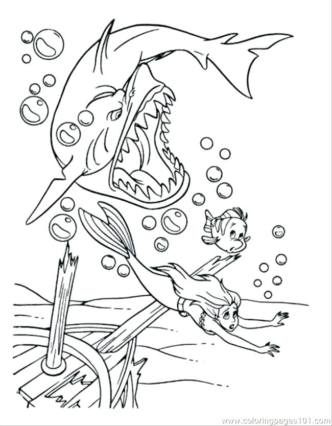 650x834 Coloring Page Shark Shark Coloring Picture Printable Shark