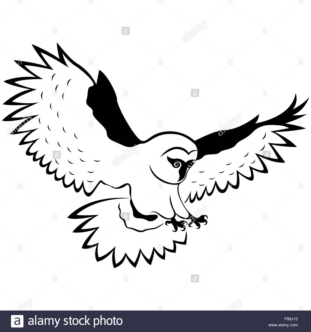 1300x1390 Funny Owl In Flight With Outstretched Wings Wide And Sharp Claws