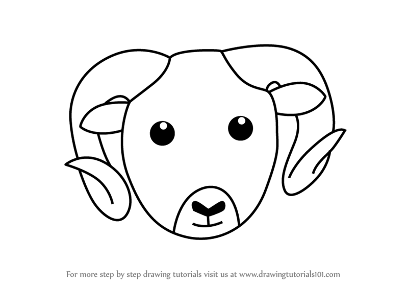 800x562 Learn How To Draw A Mountain Sheep Face Kids (Animal Faces