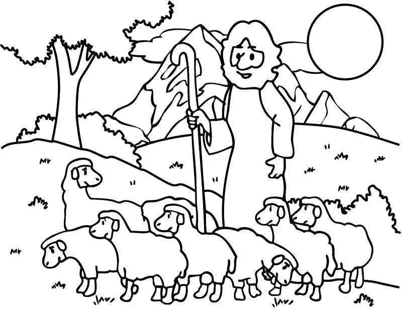 800x617 Shaun The Sheep Coloring Pictures Drawing A Pages Kids Draw Best