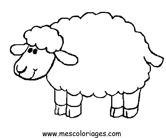 572x477 Sheep Coloring Page Preschool For Beatiful Print Kids Coloring