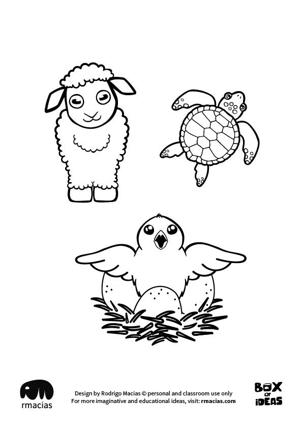 596x843 Baby Sheep Turtle And Bird Animal Adults And Kids Drawings