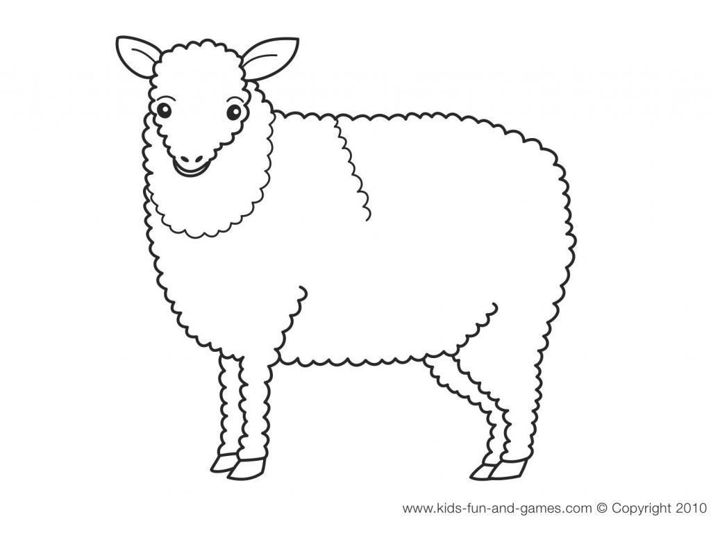 Sheep Drawing For Kids at GetDrawings