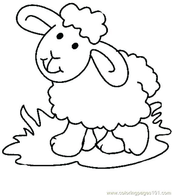 567x644 Lamb Coloring Page Sheep Drawing For Kids
