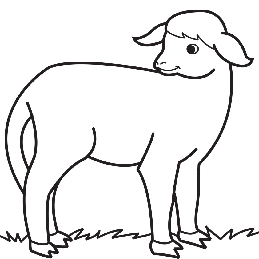 Amazing X Drawn Sheep Coloring With Lamb Clip Art Black And White