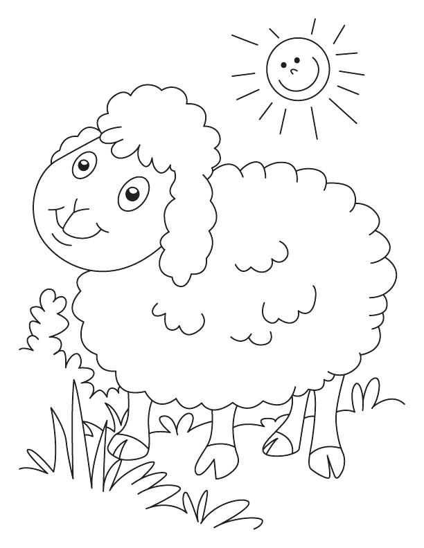 612x792 Sheep Coloring Pages Sheep Outline Coloring Page Minecraft Sheep