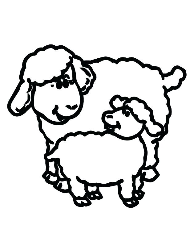 630x810 Sheep Picture To Color Sheep Outline Drawing Coloring Page Sheep