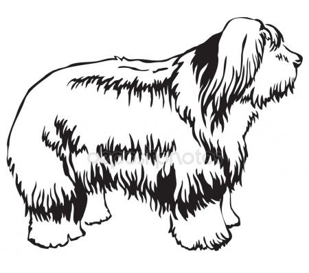 450x398 Old English Sheepdog Stock Vectors, Royalty Free Old English