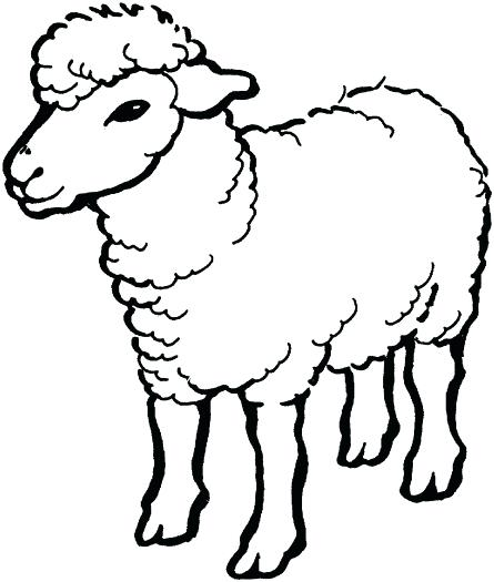 445x525 Sheep Coloring Pages Sheep Coloring Pages Sheep Coloring Page