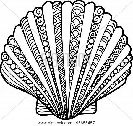 450x424 Hand Drawn Outline Doodle Shell Illustrations. Seashell Drawing