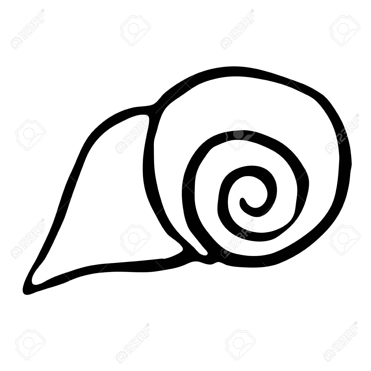 1300x1300 Sea Shell. Vector Illustration. Drawing By Hand. Royalty Free