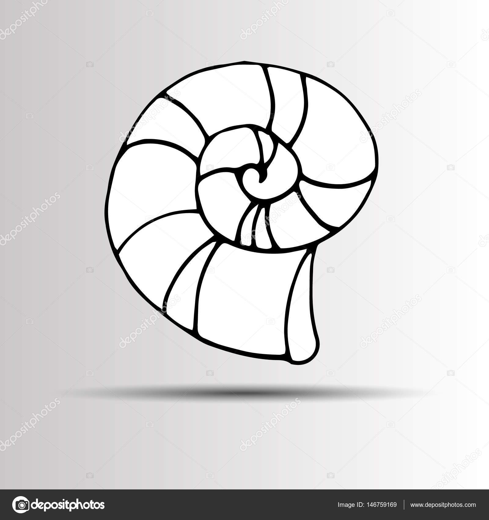 1600x1700 Vector Set With Sea Shell Sketch Isolated On White. Seashells. Set
