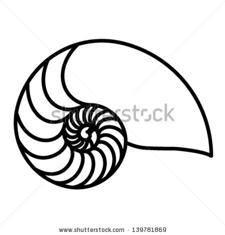 450x470 Drawn Shell Nautilus Shell