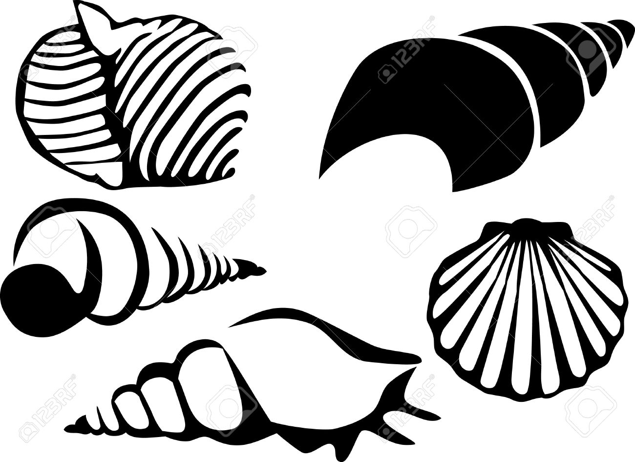 1300x945 Image Result For Sea Shell Line Drawing Block Printing