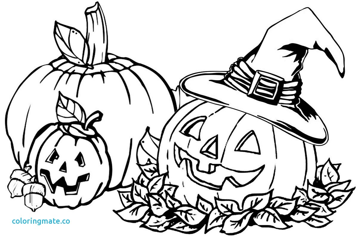 1200x798 Free Printable Pumpkin Coloring Pages Unique Adorable Fall