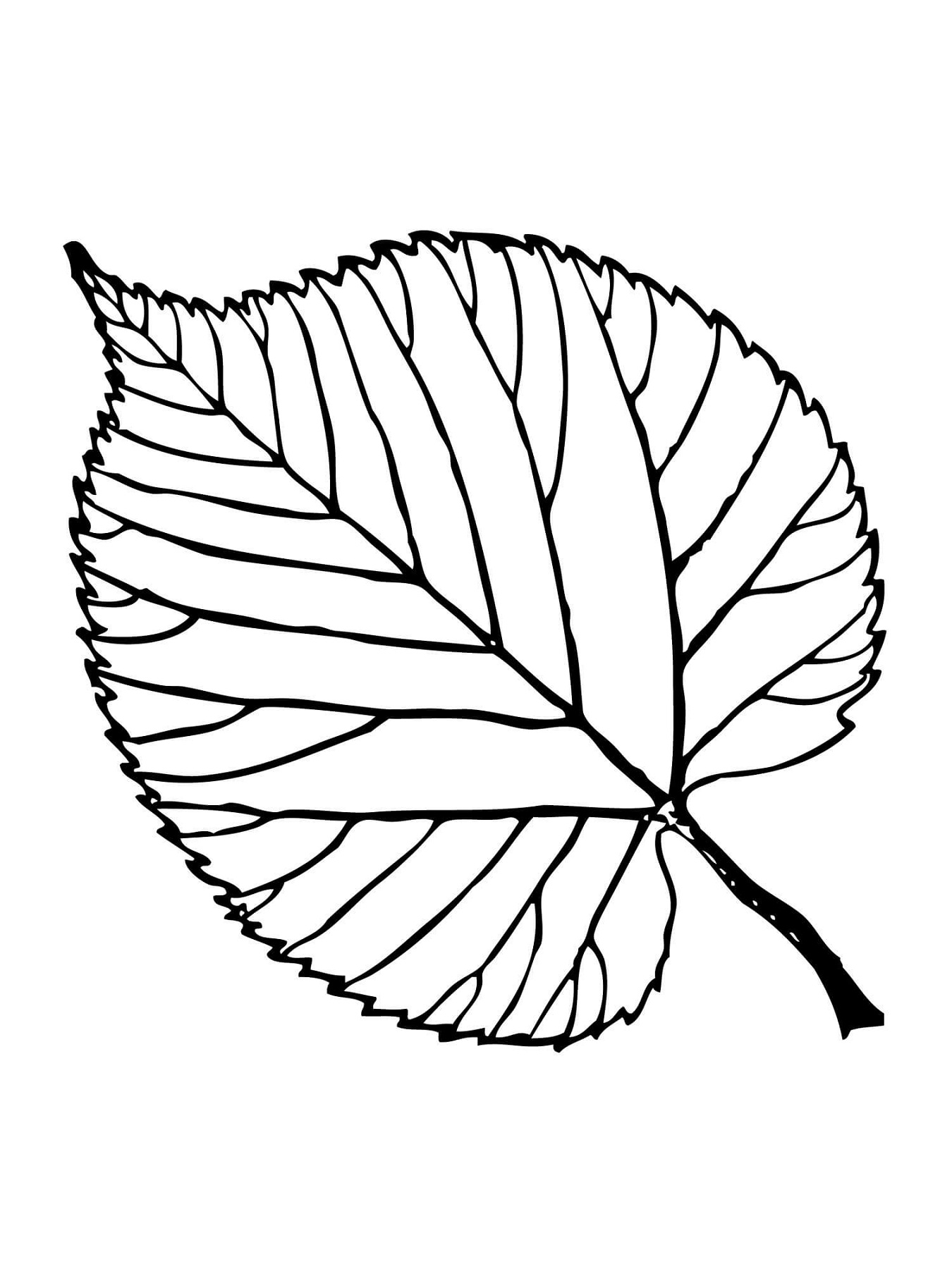 1350x1800 Leaf Coloring Pages Printable Activity Shelter Coloring Pages