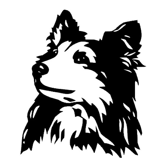 562x562 Hunde Wandtattoo Sheltie
