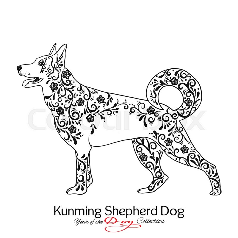 800x800 Kunming Shepherd Dog. Black And White Graphic Drawing Of A Dog