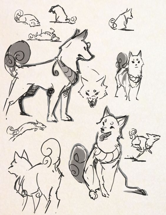 564x729 Designing A Shiba Dog Character Missing My Doggy So Much