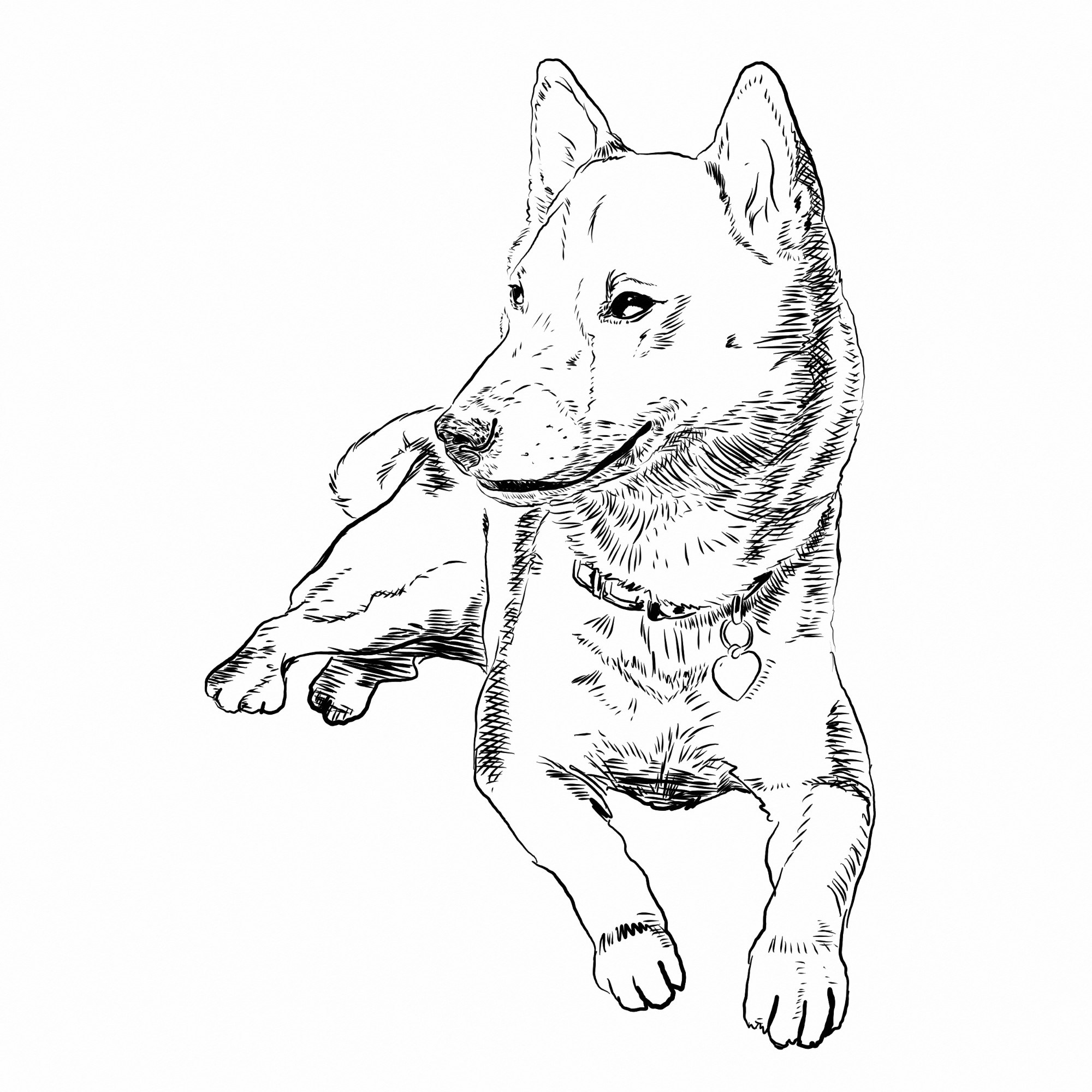 2000x2000 Free Coloring Book Dogs Themed The Space Wanderer