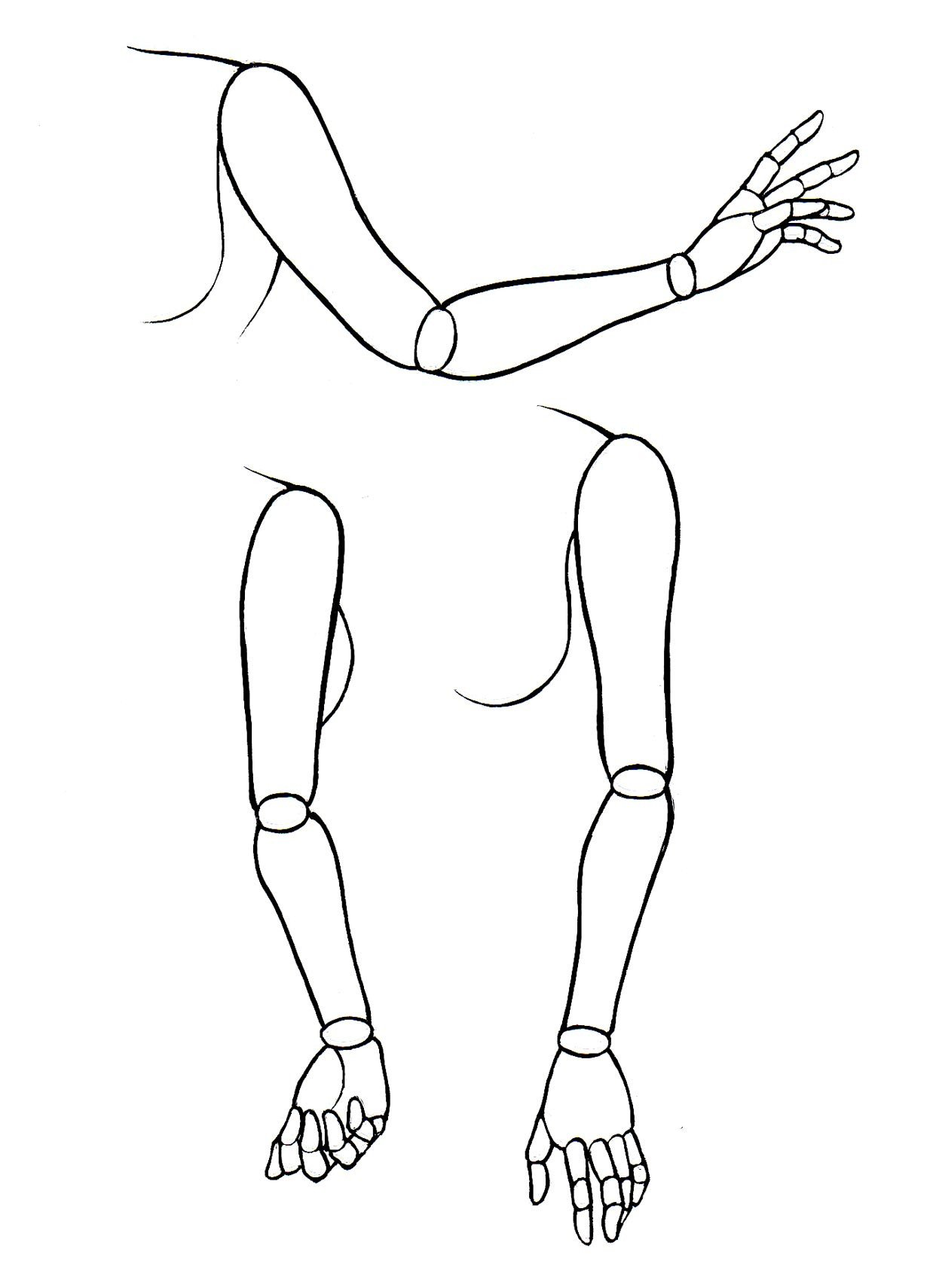 1242x1710 How To Draw Manga Bodies (Part 2) Manga University Campus Store