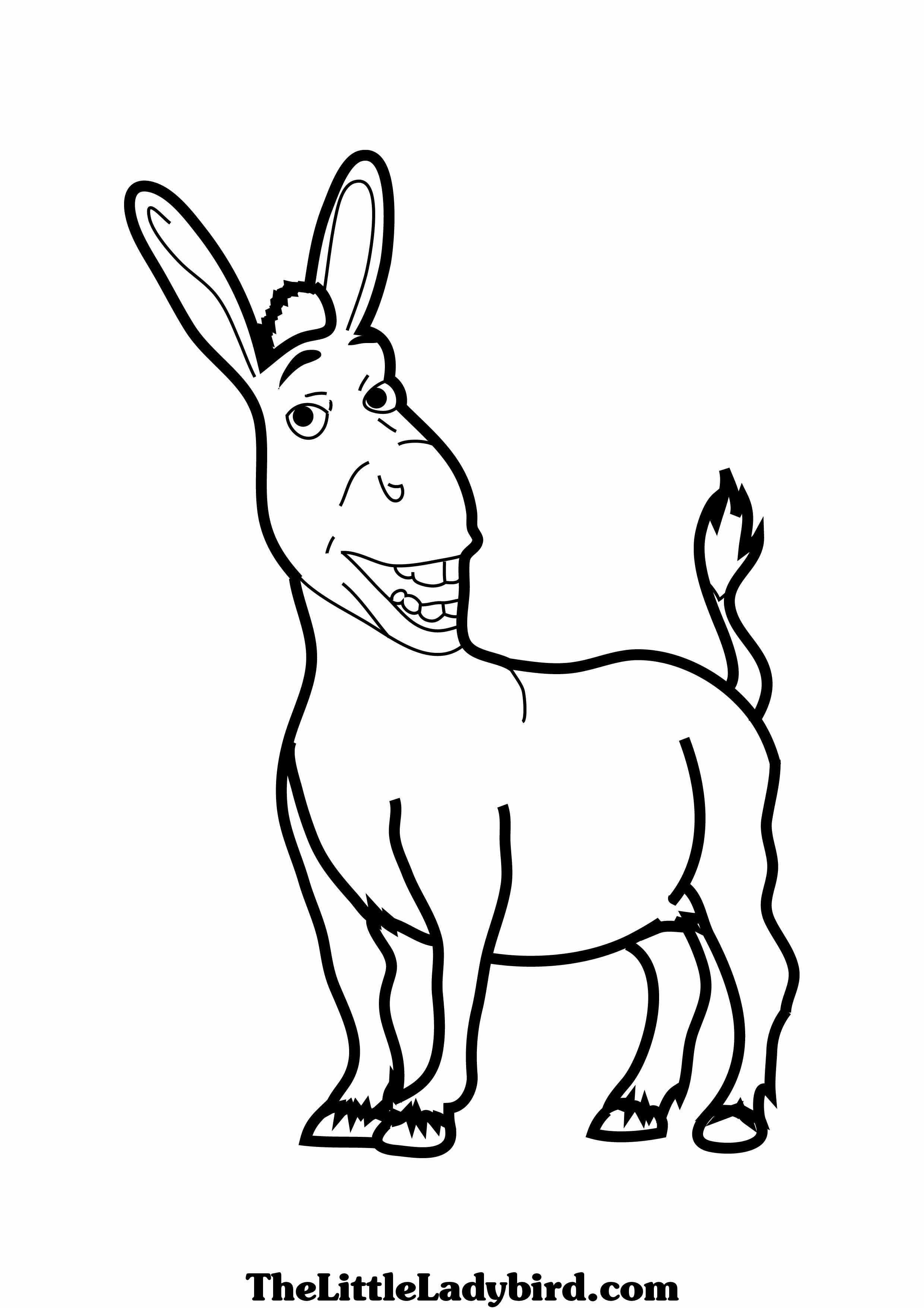 Shrek Donkey Drawing at GetDrawings.com | Free for personal use ...