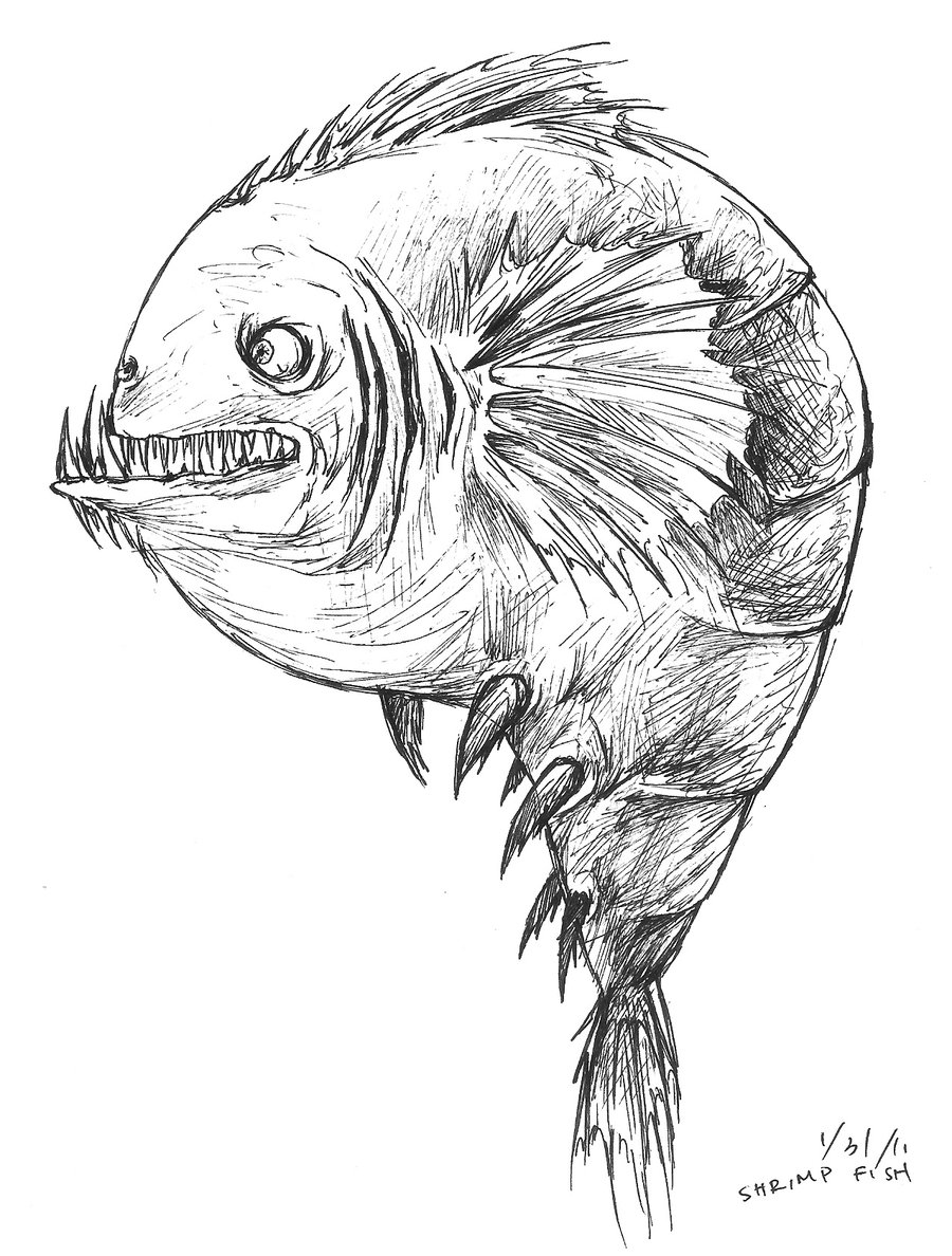 900x1188 Ugly Shrimp By Paper Jellyfish