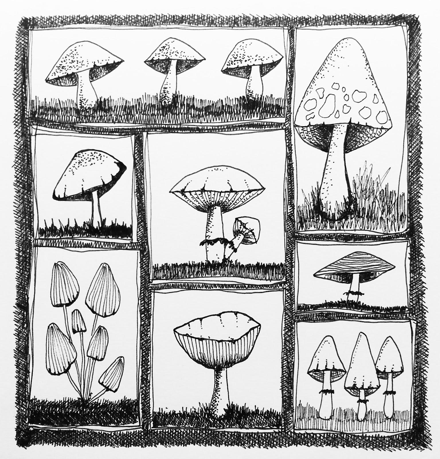 1535x1600 The Rare Pear Studio Blog How To Draw A Mushroom Because I